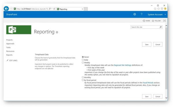 Microsoft Project Reporting