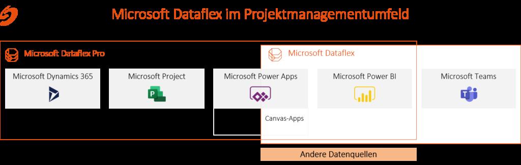 Microsoft Datatflex im Projektmanagementumfeld